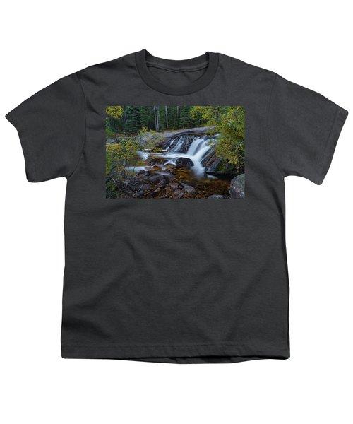 Lower Copeland Falls Youth T-Shirt by Gary Lengyel