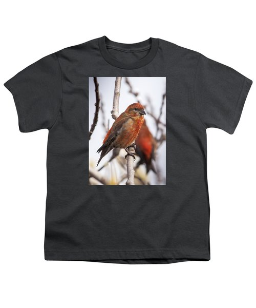 Male Red Crossbills Youth T-Shirt