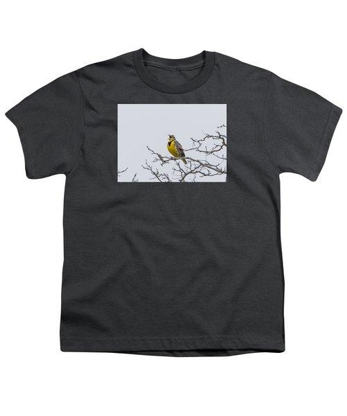 Meadowlark In Tree Youth T-Shirt