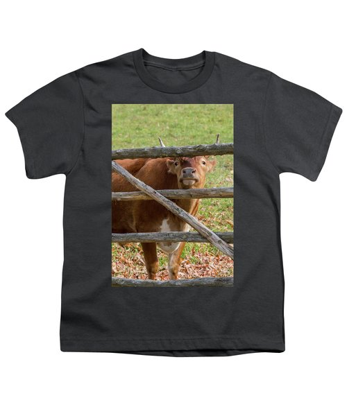 Youth T-Shirt featuring the photograph Moo by Bill Wakeley