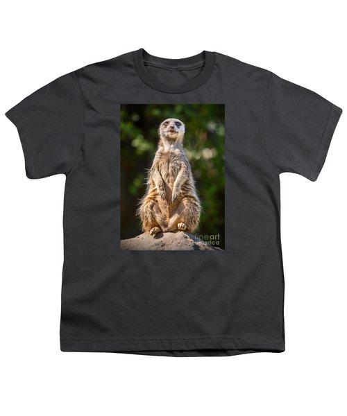 Morning Sun Youth T-Shirt by Jamie Pham