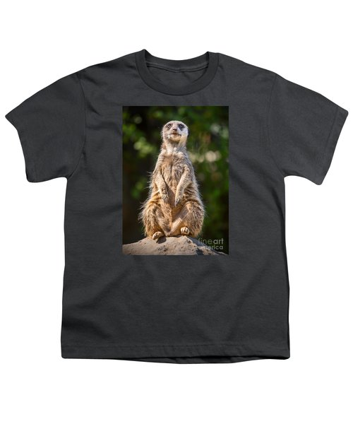 Morning Sun Youth T-Shirt