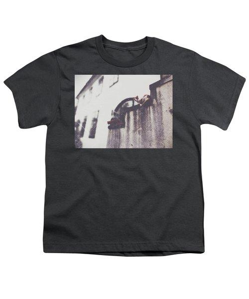 Neighbors Cats Youth T-Shirt by Siegfried Ferlin