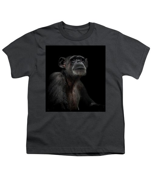 Noble Youth T-Shirt by Paul Neville