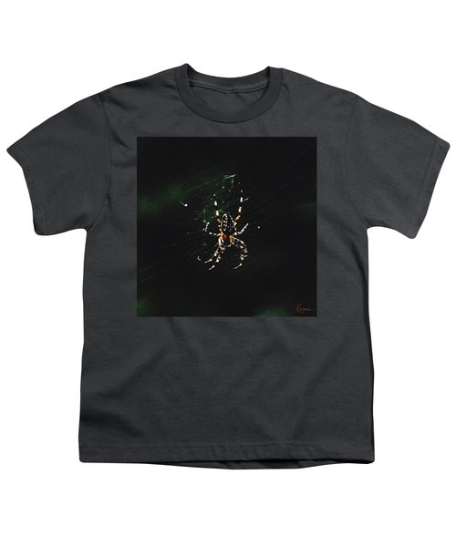 Orb Weaver Youth T-Shirt