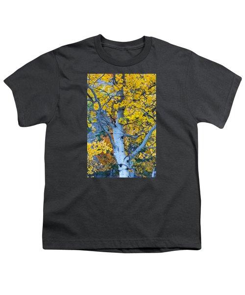 Quaking Aspen Youth T-Shirt