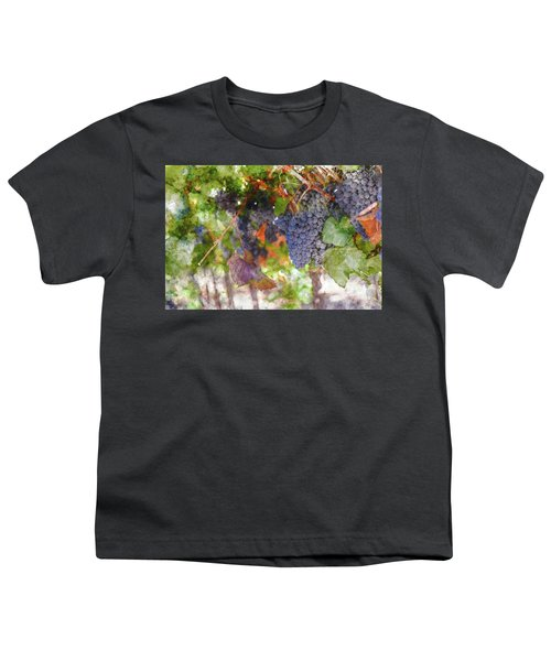 Red Wine Grapes On The Vine In Wine Country Youth T-Shirt