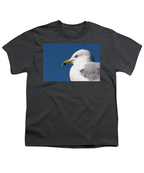 Ring-billed Gull Portrait Youth T-Shirt