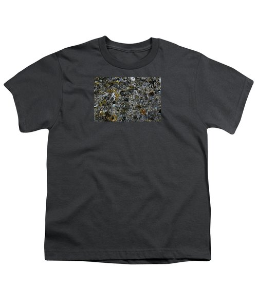 Rock Lichen Surface Youth T-Shirt by Nareeta Martin