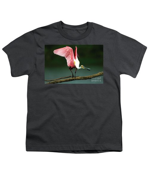 Rosiette Spoonbill Texas Youth T-Shirt by Bob Christopher