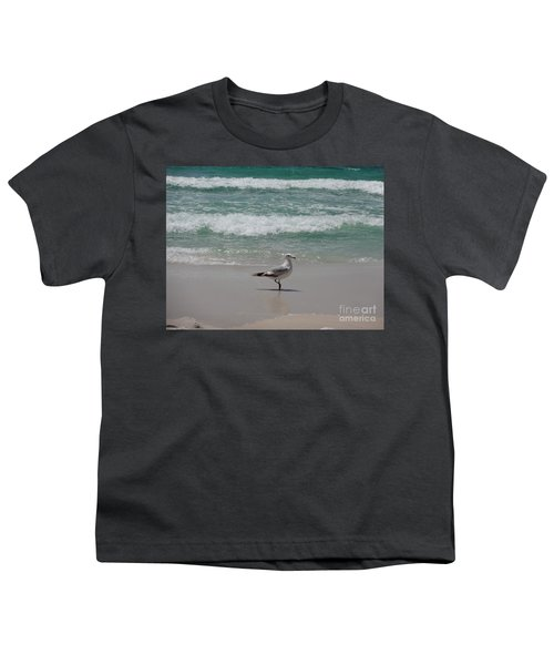 Seagull Youth T-Shirt by Megan Cohen