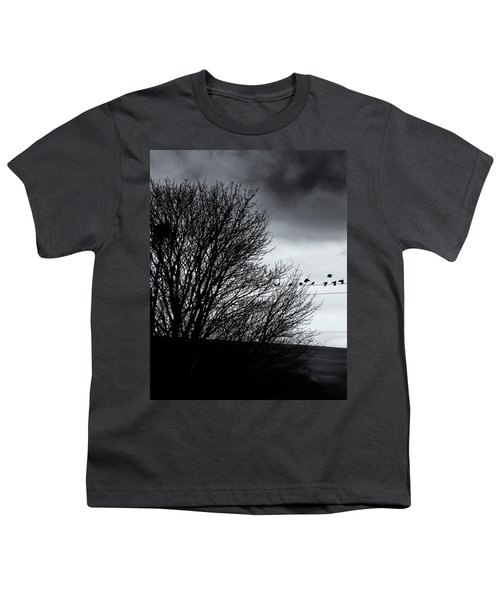 Starlings Roost Youth T-Shirt by Philip Openshaw