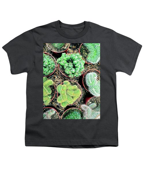 Succulents And Cactus Plants In Pots Youth T-Shirt