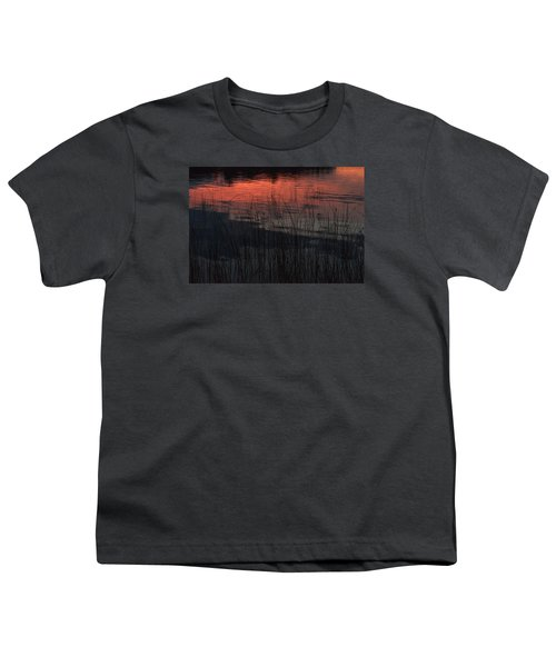 Sunset Reeds Youth T-Shirt by Gary Eason
