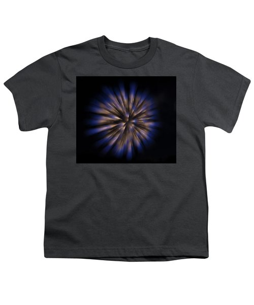 The Seed Of A New Idea Youth T-Shirt by Alex Lapidus
