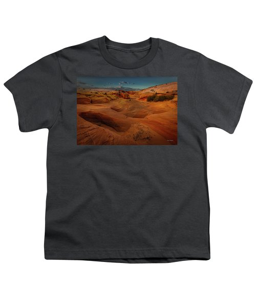 The Wash Of Subtle Shapes And Colors Youth T-Shirt