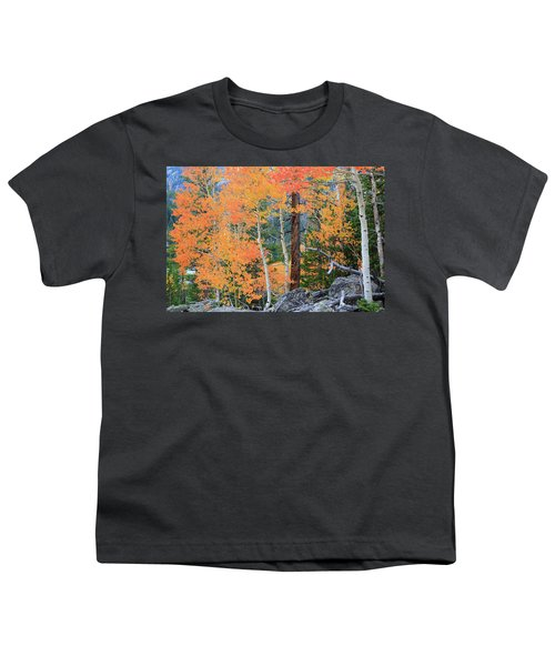 Youth T-Shirt featuring the photograph Twisted Pine by David Chandler
