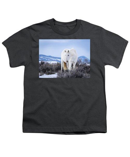 White Wild Horse Mystic Of Sand Wash Basin Youth T-Shirt