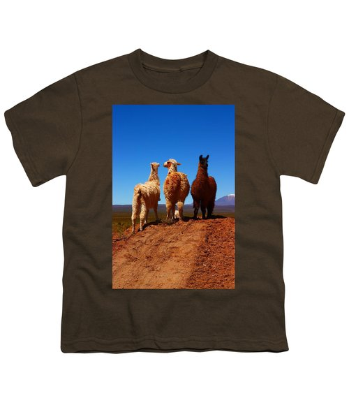 3 Amigos Youth T-Shirt by FireFlux Studios