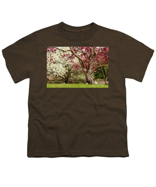 Apple Blossom Colors Youth T-Shirt by Joe Mamer