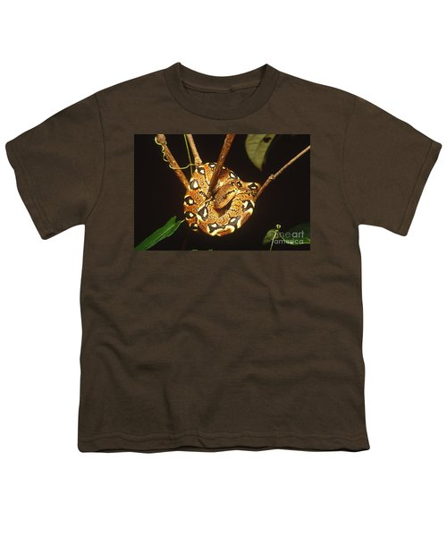 Boa Constrictor Youth T-Shirt by Art Wolfe