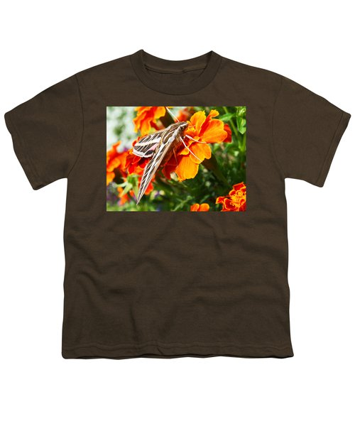 Hummingbird Moth On A Marigold Flower Youth T-Shirt