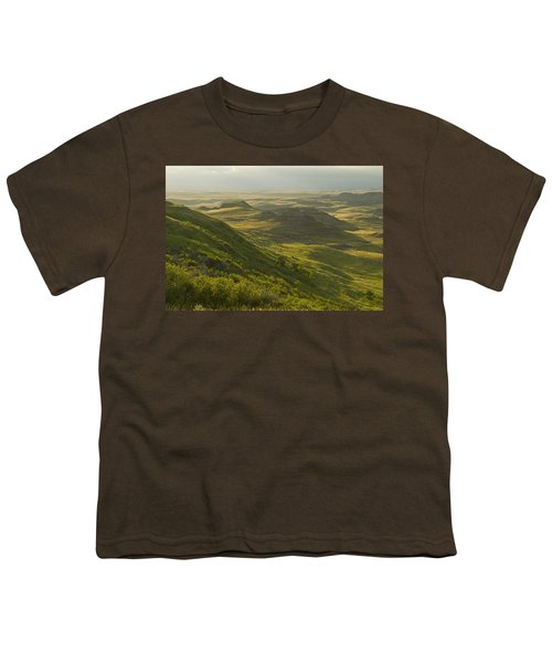 Killdeer Badlands In East Block Of Youth T-Shirt by Dave Reede
