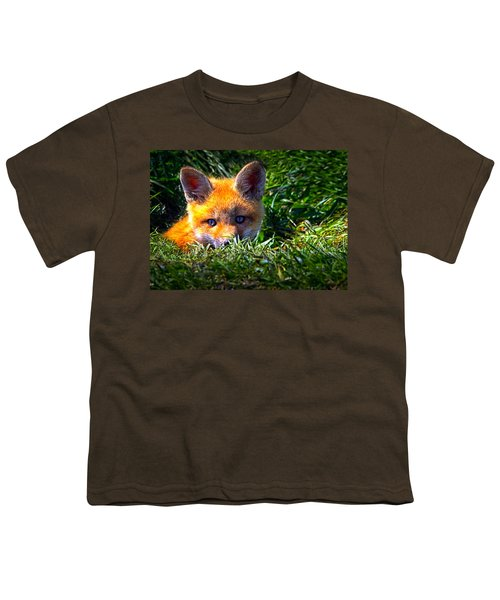 Little Red Fox Youth T-Shirt