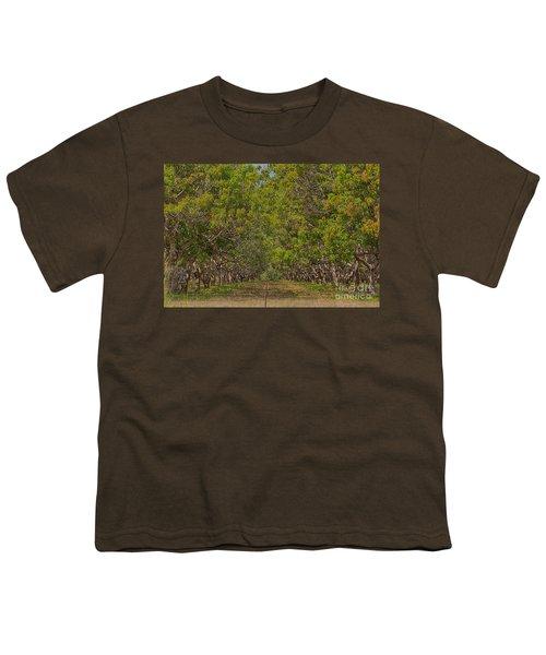 Mango Orchard Youth T-Shirt by Douglas Barnard