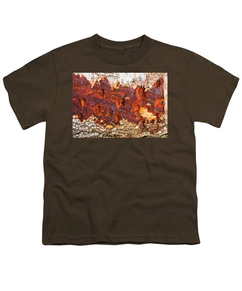 Tree Closeup - Wood Texture Youth T-Shirt by Matthias Hauser