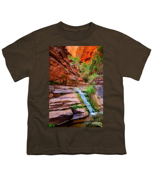 Upper Elves Chasm Cascade Youth T-Shirt by Inge Johnsson