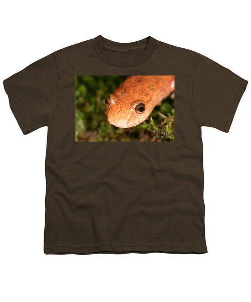 Spring Salamander Youth T-Shirt by Ted Kinsman