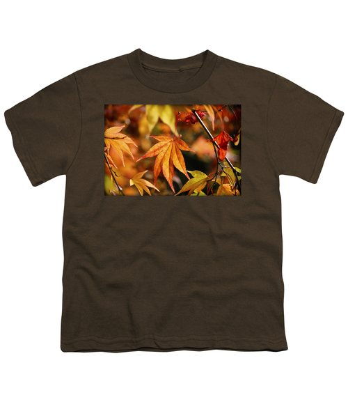 Youth T-Shirt featuring the photograph Golden Fall. by Clare Bambers