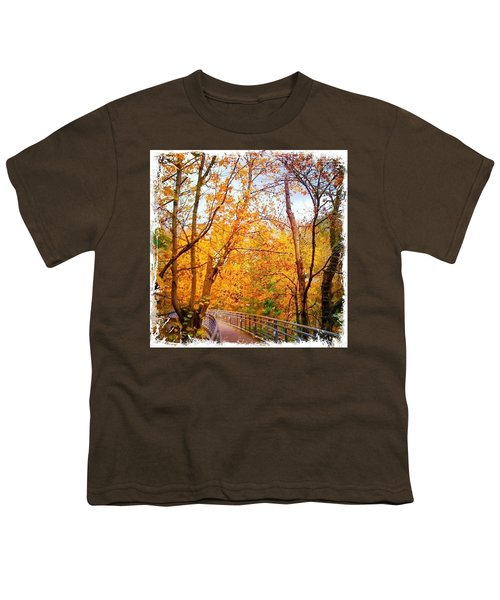 Reed College Canyon Bridge To Campus Youth T-Shirt