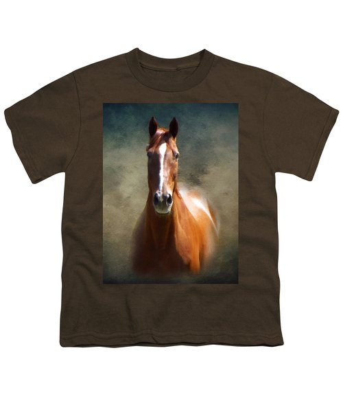 Misty In The Moonlight P D P Youth T-Shirt