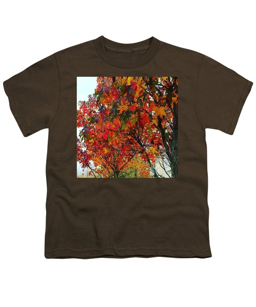 A Riot Of Color Sweet Gum Trees Youth T-Shirt