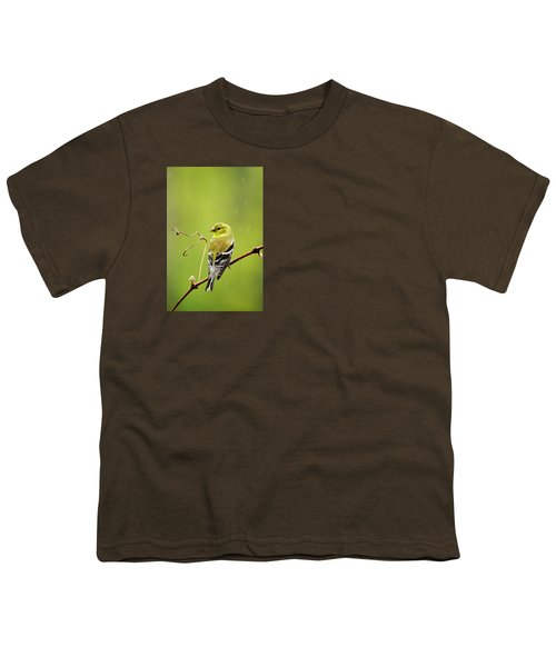 American Goldfinch In The Rain Youth T-Shirt