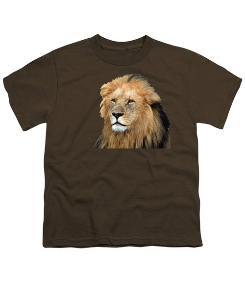 Masai Mara Lion Portrait    Youth T-Shirt by Aidan Moran