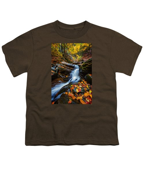 Autumn In The Catskills Youth T-Shirt
