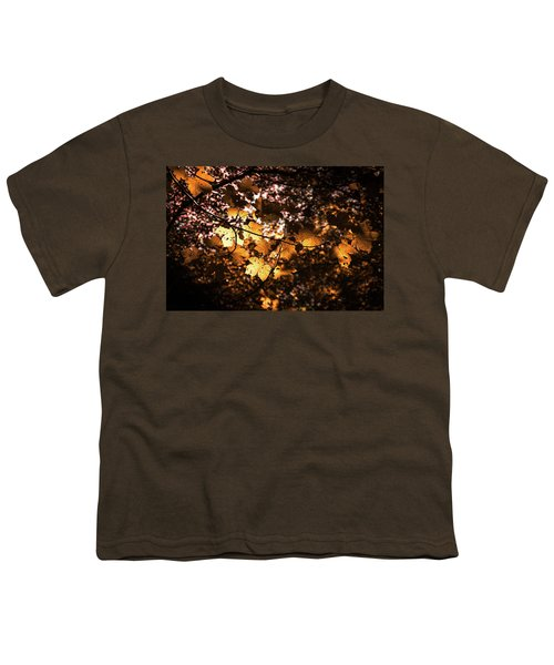 Autumn Leaves Youth T-Shirt