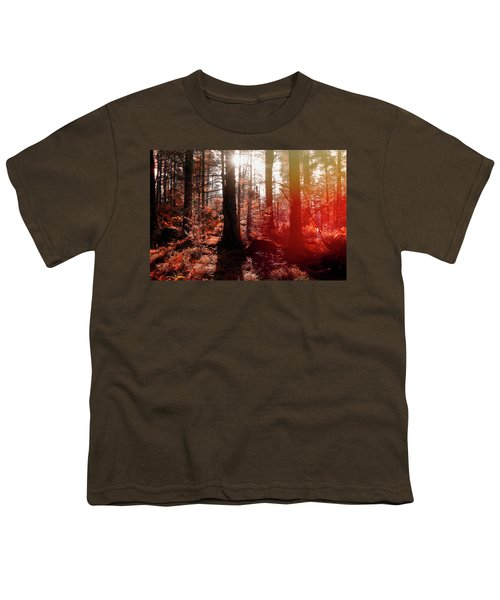 Autumnal Afternoon Youth T-Shirt