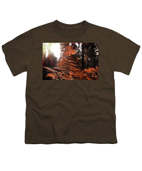 Autumnal Evening Youth T-Shirt