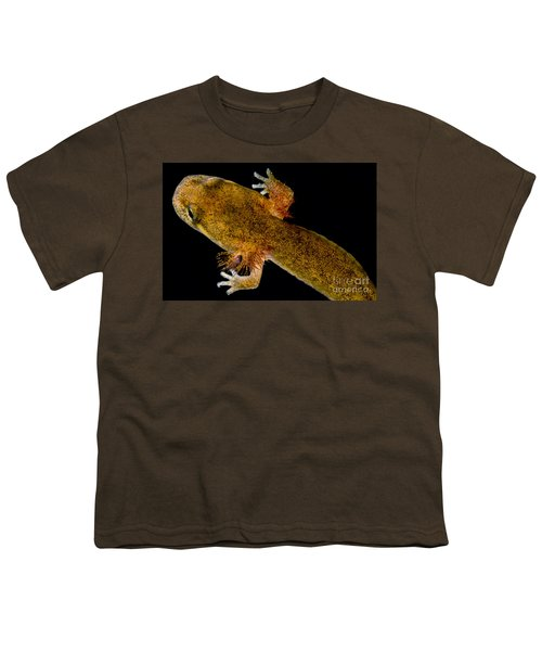 California Giant Salamander Larva Youth T-Shirt by Dant� Fenolio