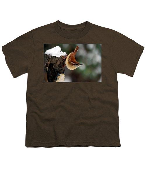 Carolina At The Suet Post Youth T-Shirt by Skip Willits