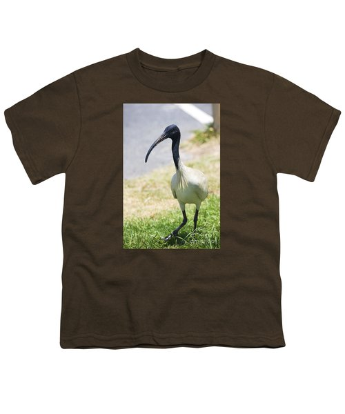 Carpark Ibis Youth T-Shirt by Jorgo Photography - Wall Art Gallery