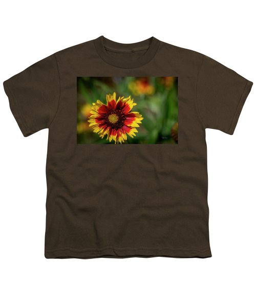 Celebration Of Yellow And Red Youth T-Shirt