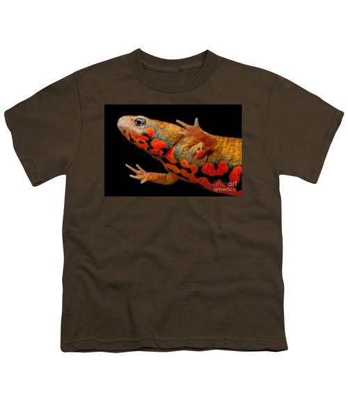 Chuxiong Fire Belly Newt Youth T-Shirt by Dant� Fenolio