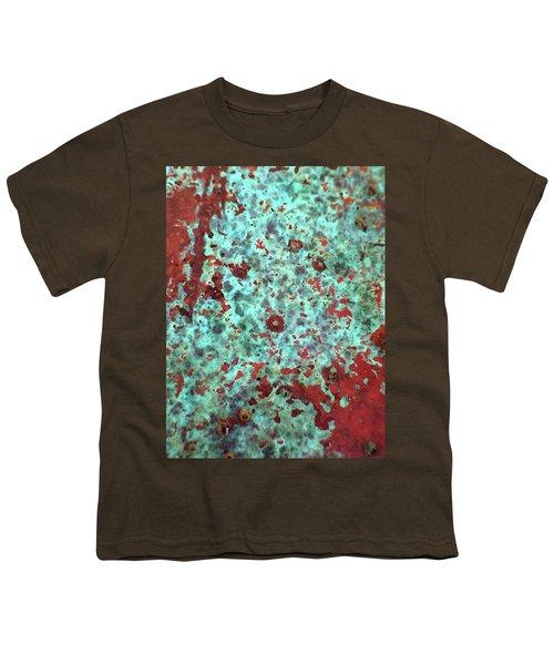 Copper Patina No. 39-1 Youth T-Shirt
