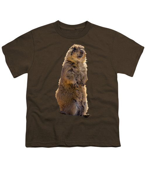 Desert Dawg Youth T-Shirt by Mark Myhaver
