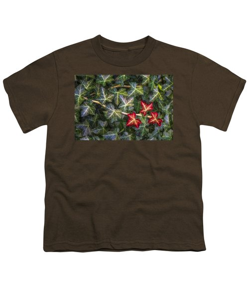 Youth T-Shirt featuring the photograph Fall Ivy Leaves by Adam Romanowicz